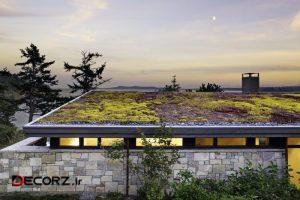 گلخانه در پشت بام، چگونه یک سقف سبز داشته باشیم؟!