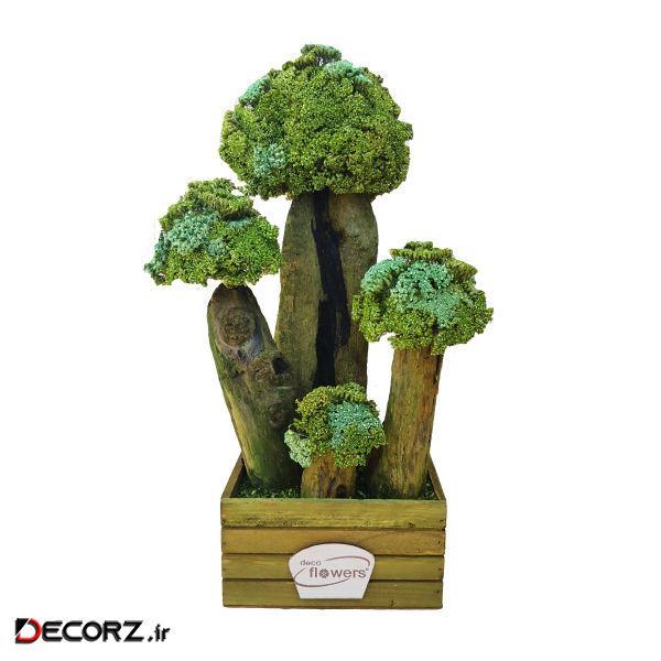 درختچه بونسای خشک دکوفلاورز مدل t127