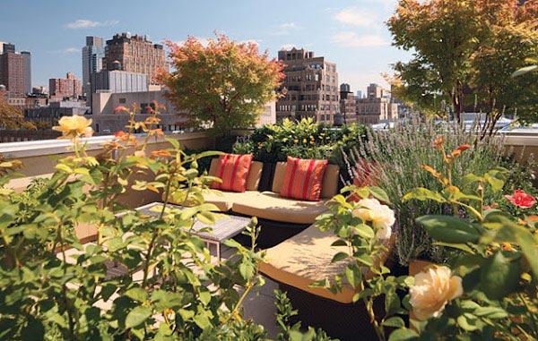تصاویر روف گاردن، چشمگیرترین ایدهها برای بام خانه شما!