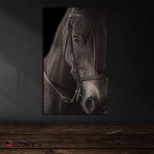 تابلو شاسی آرت سون طرح اسب کد 1T025