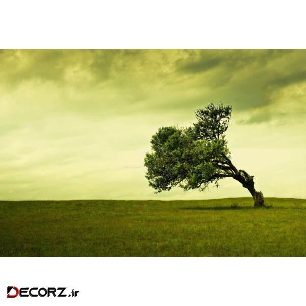 تابلو شاسی طرح منظره درخت باد مدل T1216