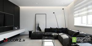 تم سیاه و سفید در دکوراسیون داخلی واحد های آپارتمانی مدرن