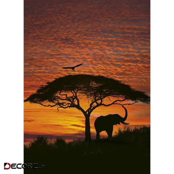 پوستر دیواری کومار مدل African Sunset 4-501